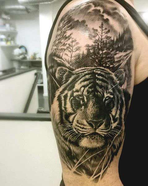Tiger tattoo designs on arm and shoulder for boys