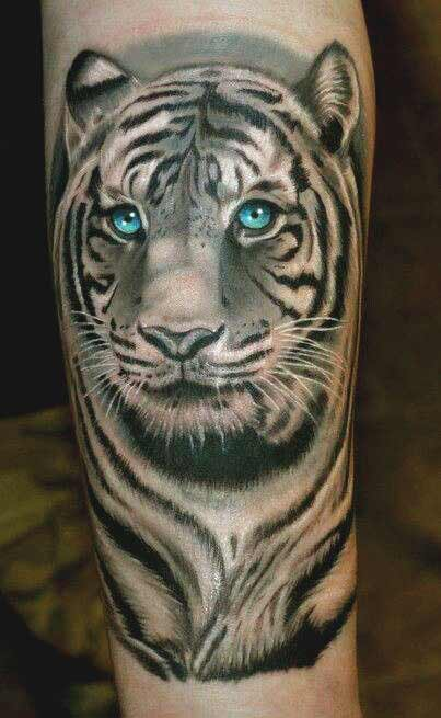 White tiger face with blue eyes tattoo on arm