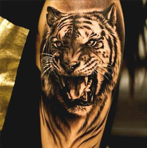 Tiger tattoo designs on arm ideas for men